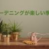 多肉植物でミニチュアガーデン